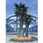 Tree: Tropical Copero Palm