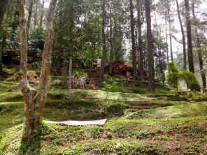 Hutan Wisata Curug Omas