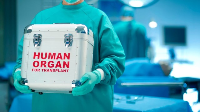 Democrats Big Push Organ Harvesting|Targets Children As Young As 14