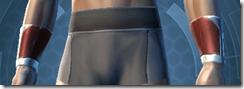 Shield Warden Male Bracers