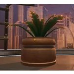 Potted Plant: Yavin Cave Fern
