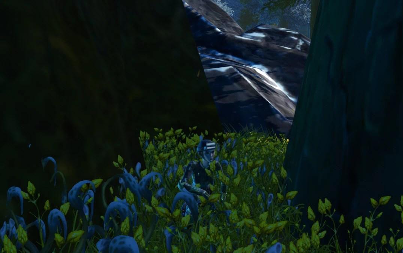 Arke-Forest-Kneel