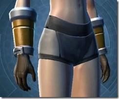 Gifted Wanderer Gloves