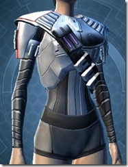 Warstorm Veteran Chest Armor