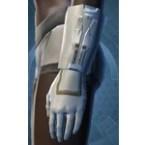Senator's Gloves (Pub)