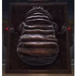 Carbonite Bounty (Hutt)