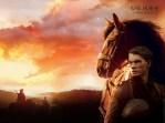 War_Horse_Wallpaper
