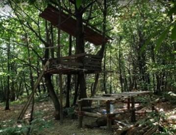 La casa sull'albero - clicca per ingrandire