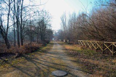 Parco della reggia