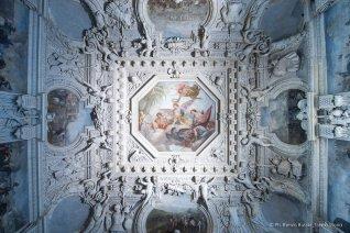 Torino, Interni del Castello del Valentino-5286