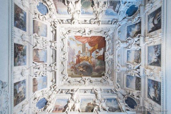 Torino, Interni del Castello del Valentino-5357