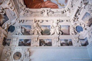 Torino, Interni del Castello del Valentino-5379