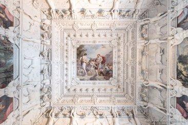 Torino, Interni del Castello del Valentino-5389