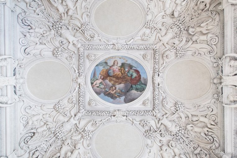 Torino, Interni del Castello del Valentino-5428