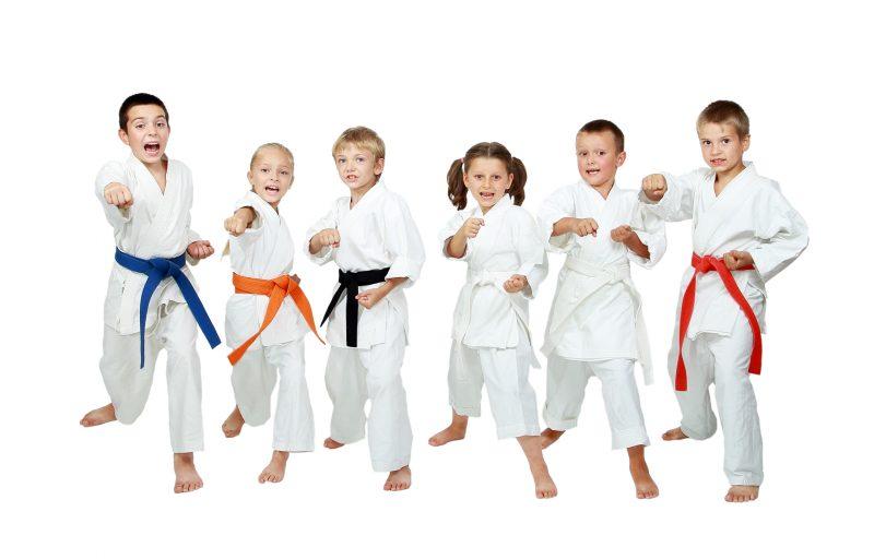 Teknik dan gerakan dasar karate untuk pemula