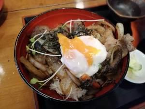 これはうまいイノシシ丼だ!山小屋の猟師気分になれるいろり茶屋|松江市来待町