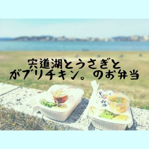 宍道湖とうさぎとがブリチキン。のお弁当|がブリチキン。松江駅前店・松江市テイクアウト