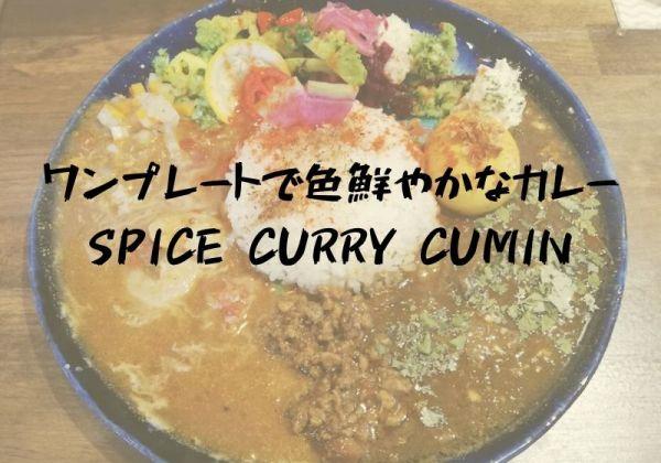 【6月24日オープン】色鮮やかなワンプレートカレーSpice Curry Cumin(スパイスカレークミン)|松江市末次町