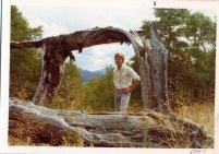 Butch-woods