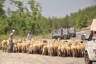 manavgat safari turları jeep safari manavgat tours best tours in manavgat alanya (1 (20)