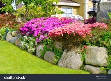 stock-photo-flowers-and-stones-in-front-of-the-house-front-yard-landscape-design-106556252