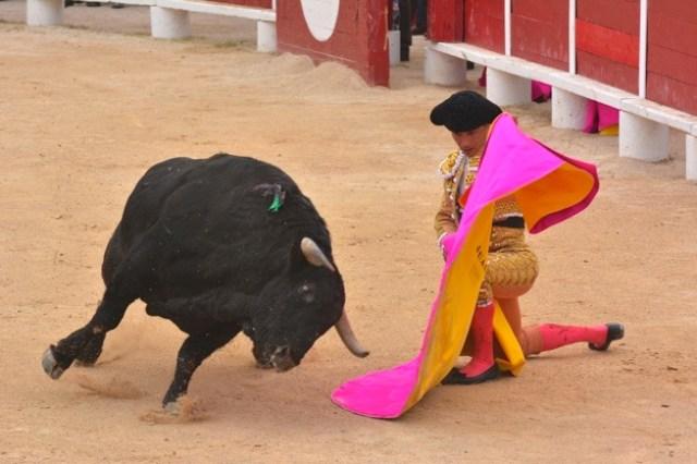 Juan Bautista. Palavas (3)