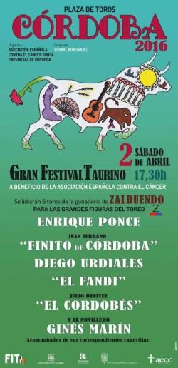 Festival Cordoba cancer 2016