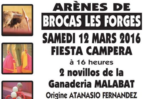 Brocas-fiestacampera2016
