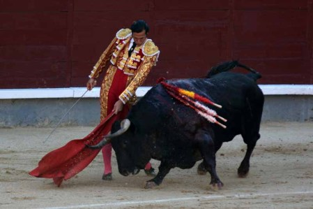David Mora Alcurrucen MADRID 31 MAI 2019 © Ferdinand De Marchi