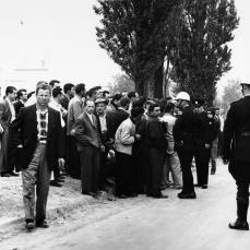 """Flying squad"" on Shalman Boulevard, Richmond Hill. H. Pat Bellingham. June 1, 1961. York University, Clara Thomas Archives and Special Collections, Toronto Telegram fonds, ASC52980."