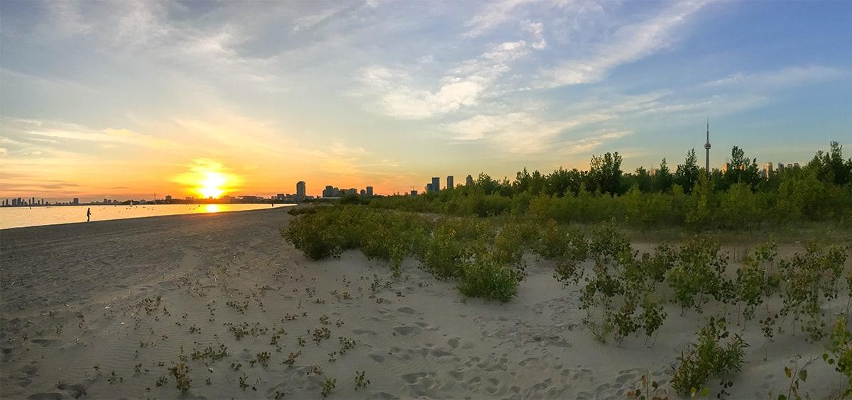Hanlan's Point Beach at sunset