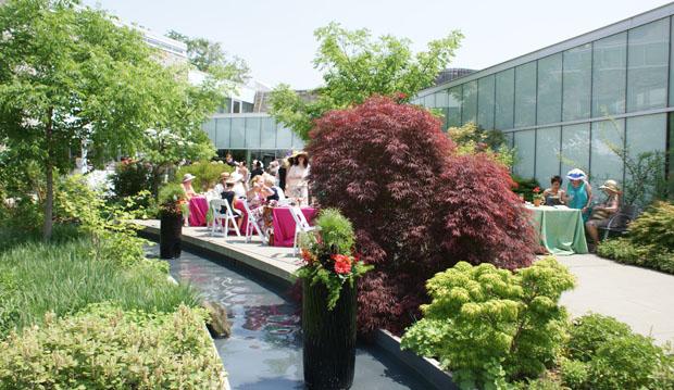 westview terrace garden party
