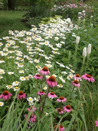 Toronto Island WTP Garden