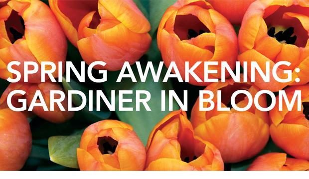 spring-awakening-2013-web