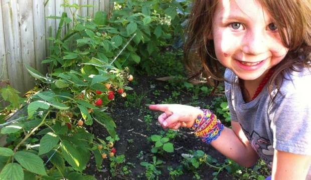 Hilary - pointing at tomatoes