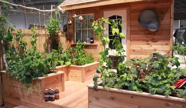 edible gardens go global