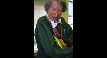 Volunteer Ann White posing with a stick insect.
