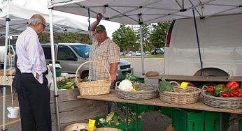 Fisher Mill Farms, one of the market's vendors, donated 800 cobs of corn for Monday's event.