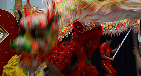The red lion, performed by Kavin Ketheeswaran in the tail and and David Man in the head, is encircled by the dragon during Chinese New year celebrations at Scarborough Town Centre on Sunday. The Year of the Dragon is said to bring good fortune.