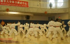 The Orange and Purple Belts demonstrating the traditional sport of Karate.