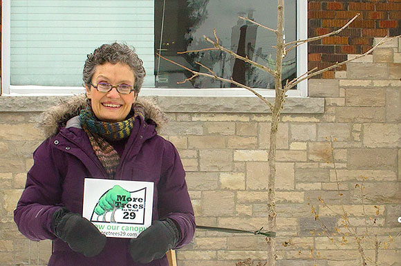 Leigh Davidson, a founder of MoreTrees29, stands by a Ginkgo planted in the fall on Elmsdale Avenue.