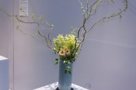 A tall vase has multiple small vines spreading off of it.