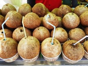 Korean Coconuts Toronto Seoulcialite