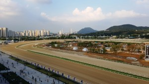 The Toronto Seoulcialite Sunday Funday Day at the Races