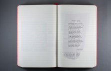 Journal Reflections: Dave Bidini