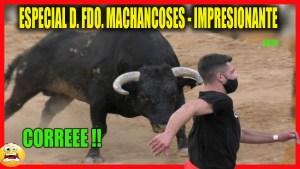 TOROS HOY ESPECIAL FAMOSOS VILA-REAL