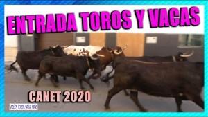 Toros Canet 2020