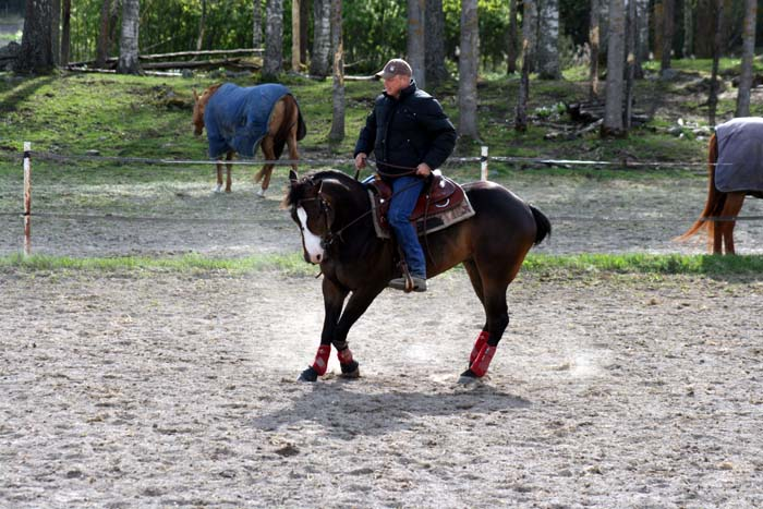 Att dansa med hästar.....Westernclinic med Per Larsson.... (1/6)