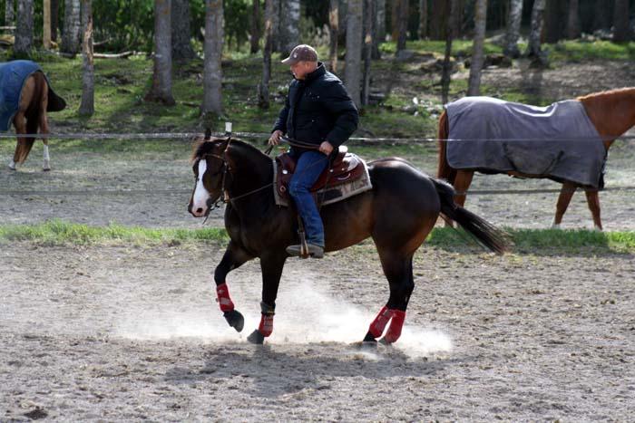 Att dansa med hästar.....Westernclinic med Per Larsson.... (2/6)