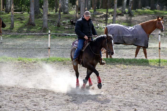 Att dansa med hästar.....Westernclinic med Per Larsson.... (4/6)